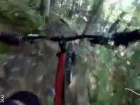 Freeride Trail — Zahar Berkut Bikepark...