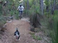 One Trail Wonder - Lancaster