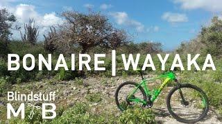 Mountain Biking Bonaire - Wayaka