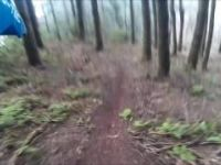 Poiso to Ribeiro Frio trail