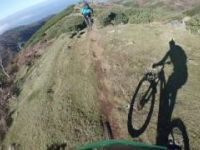 Pargos - Madeira | LINES