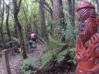 Nova Zelanda II, de Taupo al Tongariro...