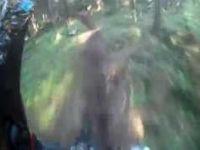 Kjerringåsen Downhill-Gubben