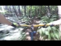 Sumas Mountain - Squid Line