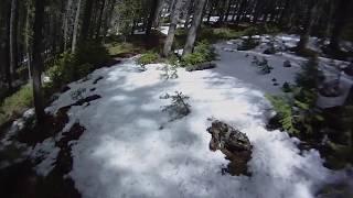 Warm Springs / Lost Trail Pass Mountain Biking Trails