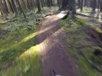 Thornhill - Trail Dweller