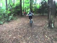 pollok downhills
