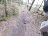 Hovskogen 17 03 2017 part1