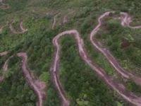 Arapuke Forest , Jack Be Nimble  {Drone Footage}