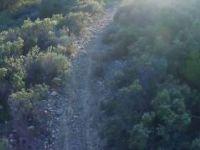 One Line trail