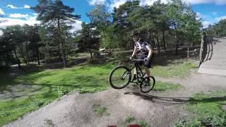 MTB Dirting with the kids