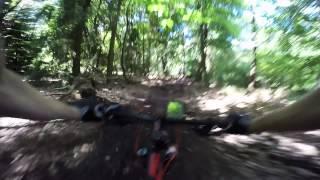 Chasing Daan Downhill