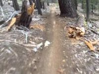Toads Wild Ride (Mountain Bike Trail)