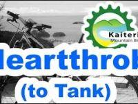 Heartthrob (to Tank) - Kaiteriteri - NZ by Hugo