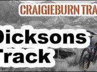 Dicksons Track  - Craigieburn Forest Park - NZ...