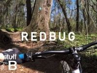 Mountain Biking Redbug Trail in Tallahassee, FL