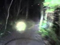 Snail Trail At Night