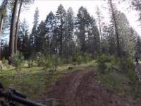 Trail 8 aka Flemming Meadows by Jenkinson...