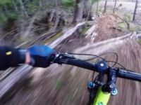 Rollercoaster DH stabilized