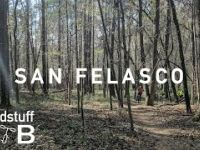 Mountain Biking San Felasco in Alachua, FL