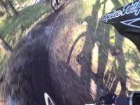 Kopein Trail | LINES