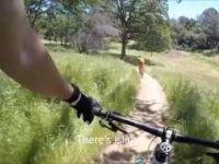 Mountain Biking Brown's Ravine (Folsom...