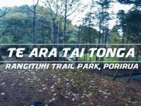 Te Ara Tai Tonga - Rangituhi Trail Park