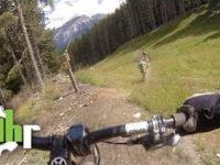 Reschenpass: Unterer Schöneben Trail