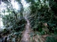 Enduro Asia MTB - GoPro Special Stage 1 Preview