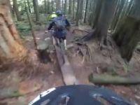 Corkscrew trail - Mt Seymour - North Shore -...
