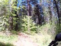 Mountain biking Trail 8 by Jenkinson Lake (Sly...