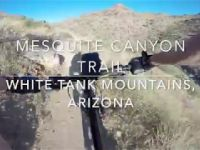 Mountain Biking Mesquite Canyon Trail | White...