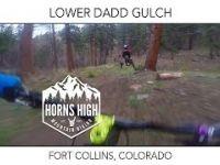 LOWER DADD GULCH | FORT COLLINS, COLORADO