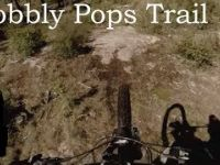 Mountain Biking Wobbly Pops Trail - Gillard...