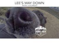 LEE'S WAY DOWN  |  AVON, COLORADO