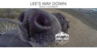 LEE'S WAY DOWN     AVON, COLORADO