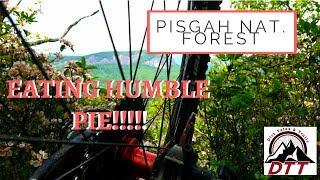PISGAH HUMBLE PIE, MOUNTAIN BIKING...