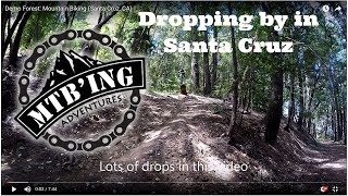 Demo Forest (Santa Cruz, CA) Mountain Biking