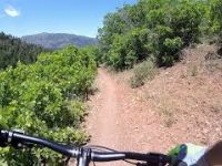 Bennie Creek Cutoff Mountain Bike Trail, Nebo...