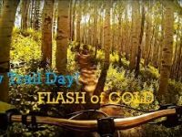 New Trails are Fun! Flash of Gold