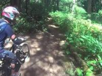 Cumberland Forest Mountain Biking - Missing Link