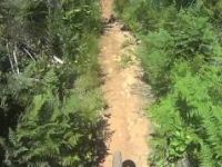 Cumberland Forest Mountain Biking - Entrails...