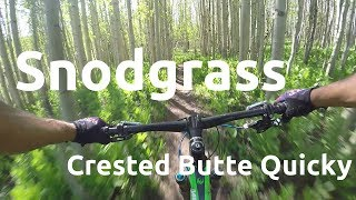 A Crested Butte Quicky :||: Snodgrass