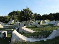 BMX PARADISE