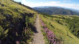Cox Hill Alberta Alpine Views and Biggest...