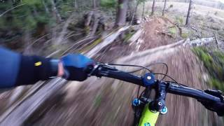 Rollercoaster DH April 2017