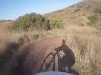 Cactus trail santiago oaks