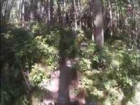 Your Mom Squamish Trail