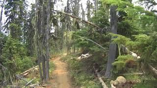 Nelson BC Fairly High Trail Mountain Bike Ride