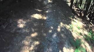 Bike trails Valašsko - trail Tanečnice ve...